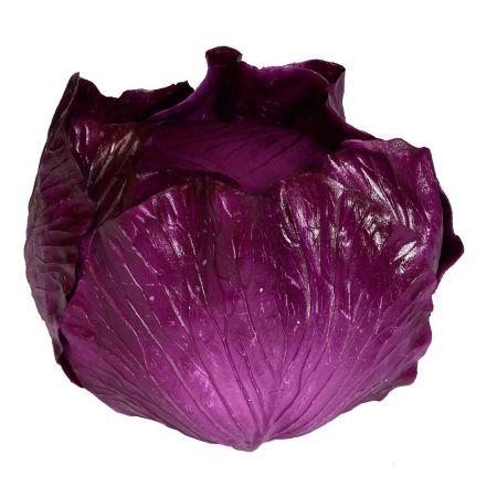 Διακοσμητικό λάχανο Μωβ 20x15cm - Απομίμηση