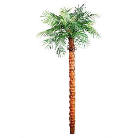 Τεχνητό δέντρο Φοίνικας Phoenix 245cm