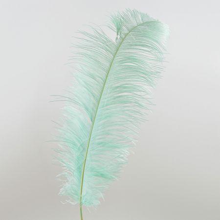 Διακοσμητικό φτερό από στρουθοκάμηλο Πράσινο 60cm