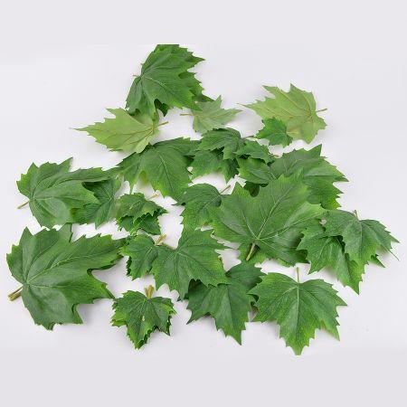 Σετ 36τχ Διακοσμητικά φύλλα Σφενδάμου Πράσινα 12x10cm, 12x15cm, 12x22cm