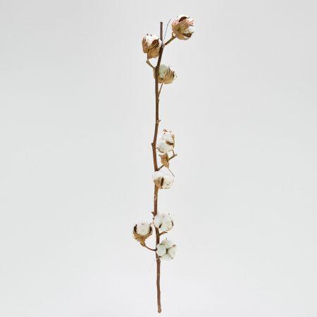 Φυσικό κλαδί με άνθη από βαμβάκι 60-80cm