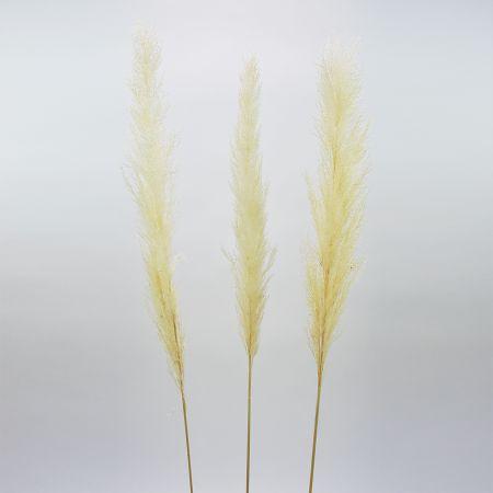 Σετ 3τχ Αποξηραμένο Pampas Grass Λευκό 110cm