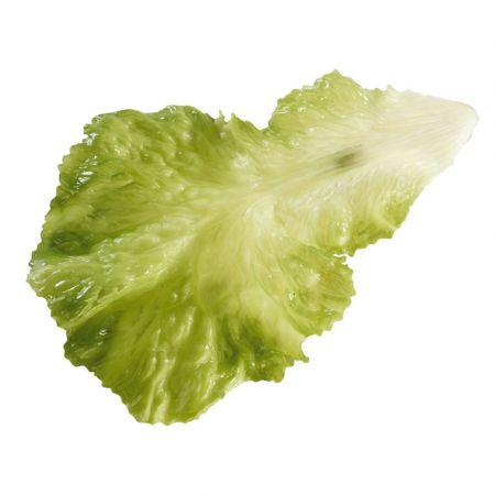 Σετ 3τχ Διακοσμητικά φύλλα μαρουλιού - απομίμηση Πράσινα 25x16cm
