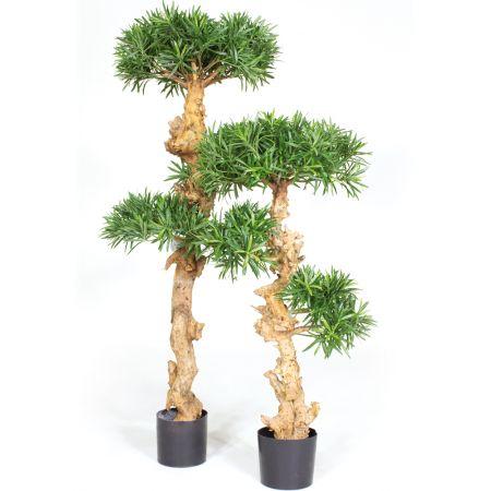 Τεχνητό Δέντρο Μπονσάι (Podocarpus Bonsai) 120cm