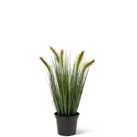 Τεχνητό Φυτό-Γρασίδι (Foxtail Grass) 60cm