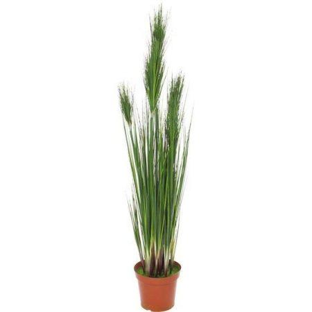 Τεχνητό Φυτό-Γρασίδι (Onion Grass) 152cm