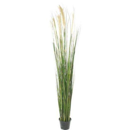 Τεχνητό Φυτό-Γρασίδι Τύφα (Cattail) 183cm