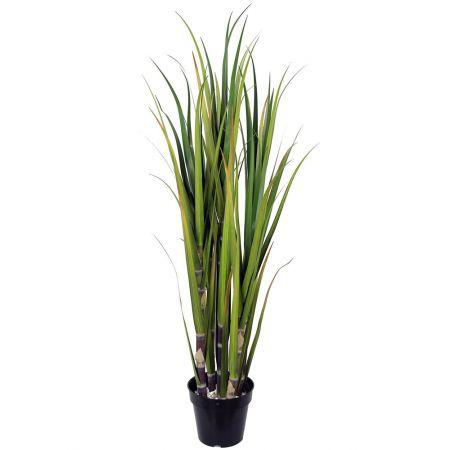 Τεχνητό Φυτό Ζαχαροκάλαμο (Sugar Cane) 122cm