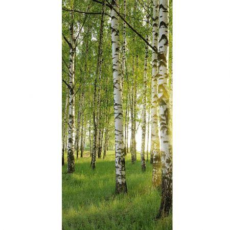 Διακοσμητική ανοιξιάτικη αφίσα - Banner με δάσος 90x180cm