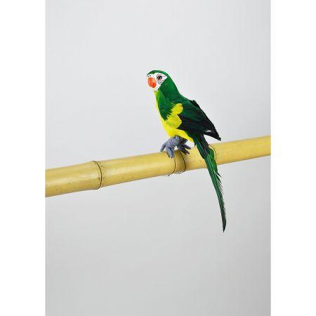 Διακοσμητικός παπαγάλος Πράσινος 31cm