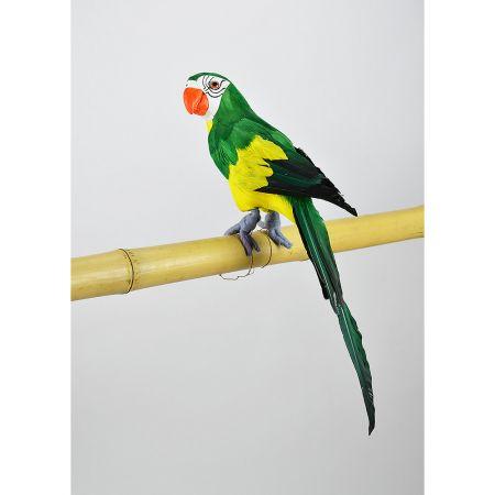Διακοσμητικός παπαγάλος Πράσινος 44cm