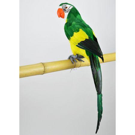 Διακοσμητικός παπαγάλος Πράσινος 58cm