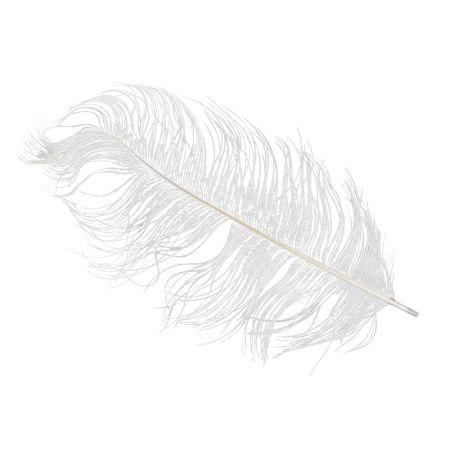 Σετ 10τμχ. Φτερό Στρουθοκάμηλου λευκό , 20cm