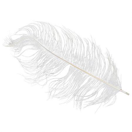 Σετ 10τχ Φτερά Στρουθοκάμηλου Λευκά 20cm