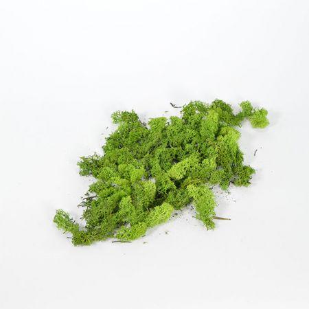 Συσκευασία 50gr Διακοσμητικά φυσικά βρύα - moss Πράσινα