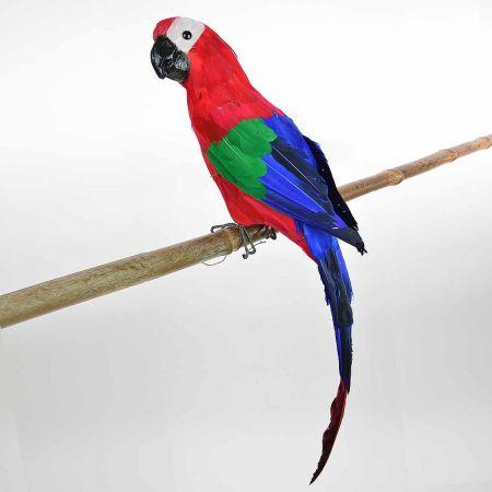 Διακοσμητικός Παπαγάλος Κόκκινος 60cm