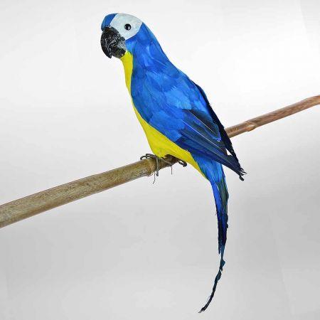 Διακοσμητικός Παπαγάλος Μπλε 60cm