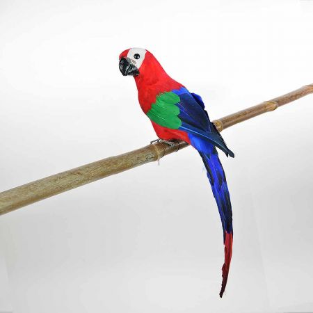 Διακοσμητικός Παπαγάλος Κόκκινος 50cm