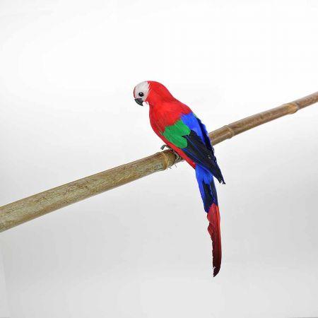 Διακοσμητικός Παπαγάλος Κόκκινος 35cm