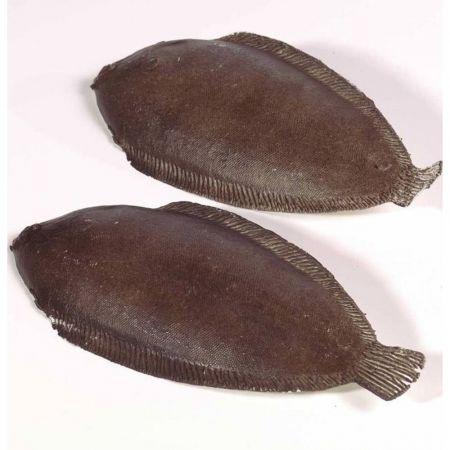 Σετ 2τμχ Διακοσμητικό ψάρι Γλώσσα - απομίμηση 26cm