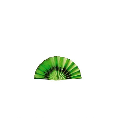 Διακοσμητική χάρτινη βεντάλια - φέτα ακτινίδιο 40cm