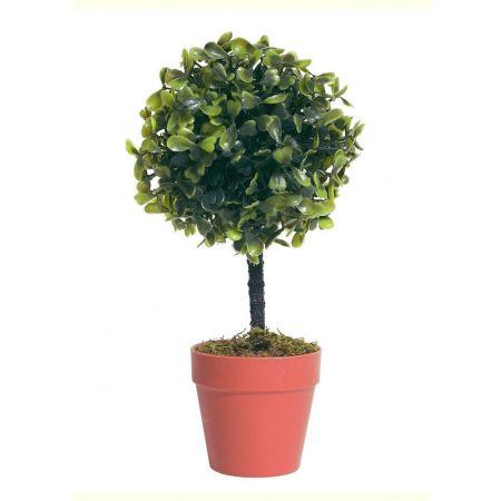 Διακοσμητικό γλαστράκι με φυτό πυξάρι 24cm