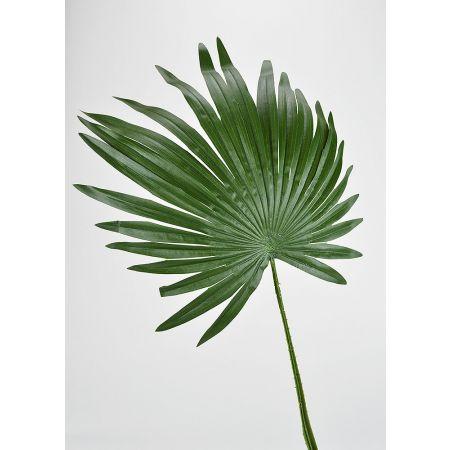 Διακοσμητικό τροπικό φοινικόφυλλο Πράσινο 80cm