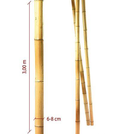Μπαμπού ιστός - καλάμι Φυσικός 6-8cm x 3m