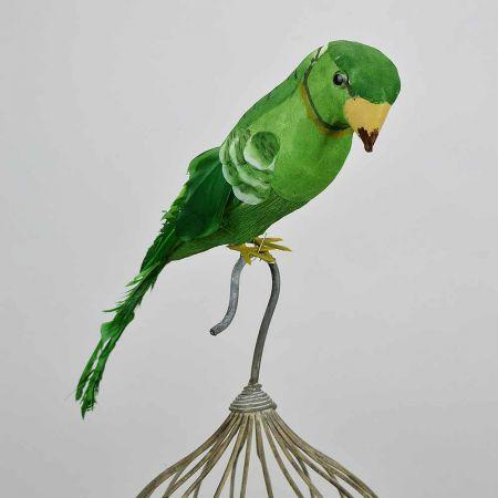 Διακοσμητικό παπαγαλάκι Parakeet Πράσινο 32cm