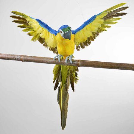 Διακοσμητικός παπαγάλος με ανοιγμένα φτερά Μπλε 55cm