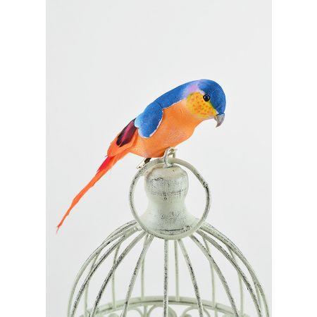 Διακοσμητικό παπαγαλάκι Parakeet με κλιπ Μπλε - Πορτοκαλί 17cm