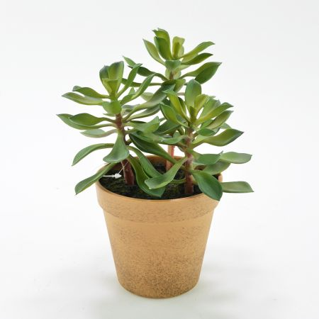 Διακοσμητικό τεχνητό φυτό Κράσουλα σε γλαστράκι 15x20cm