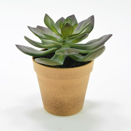Διακοσμητικό τεχνητό φυτό Εχεβέρια σε γλαστράκι 15x17cm