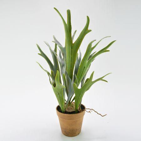 Διακοσμητικό τεχνητό φυτό Πλατυκέριο σε γλαστράκι 30x50cm