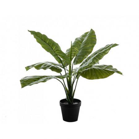 Διακοσμητικό τεχνητό φυτό Συγκόνιουμ σε γλάστρα 60cm
