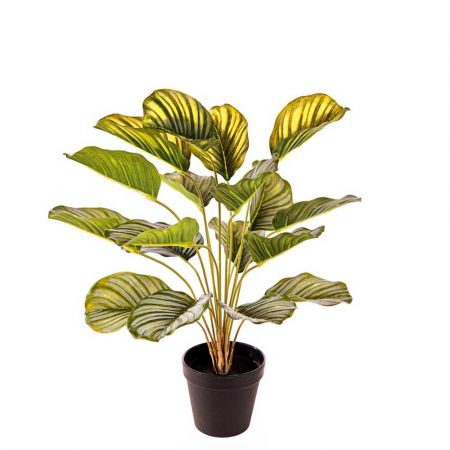 Διακοσμητικό τεχνητό φυτό Καλαθέα σε γλάστρα 50cm