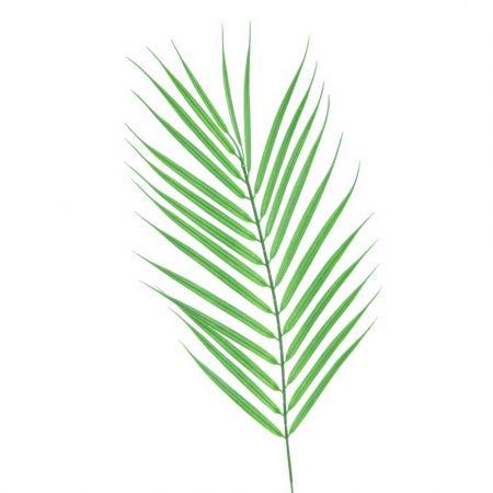 Διακοσμητικό εξωτικό φύλλο Φοίνικα τεχνητό για καλοκαιρινή διακόσμηση