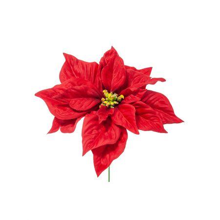 Χριστουγεννιάτικο Αλεξανδρινό λουλούδι Κόκκινο 30cm