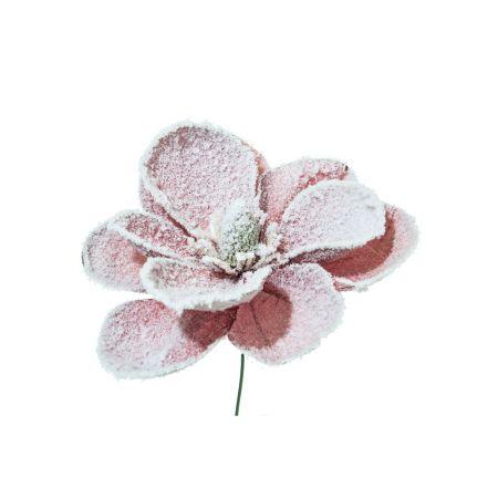Χριστουγεννιάτικο λουλούδι Μανόλια Σάπιο μήλο Χιονισμένο 24cm