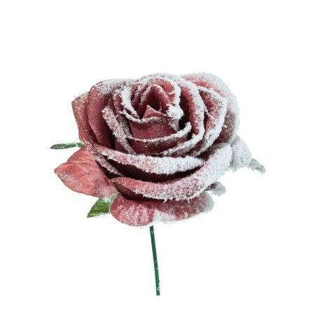 Χριστουγεννιάτικο τριαντάφυλλο χιονισμένο Σάπιο μήλο 16cm