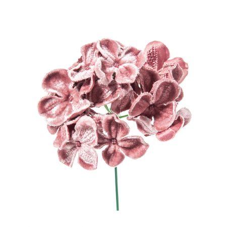 Χριστουγεννιάτικο λουλούδι Ορτανσία deluxe Σάπιο μήλο 19cm