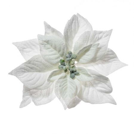 Χριστουγεννιάτικο Αλεξανδρινό άνθος Λευκό Χιονισμένο 23cm