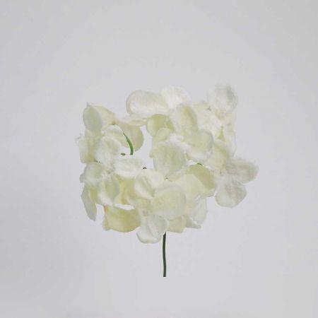 Χριστουγεννιάτικο λουλούδι Ορτανσία Λευκό Χιονισμένο 19cm