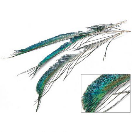 Σετ 6τχ φυσικά φτερά από παγώνι 50-60cm
