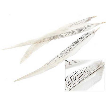 Σετ 3τχ Φυσικά φτερά Φασιανού Ασημί 50-60cm