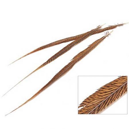 Σετ 3τχ Φυσικά φτερά Φασιανού Χρυσά 50-55cm