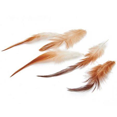 Σετ 50τχ Φυσικά φτερά από Κόκορα 10-15cm