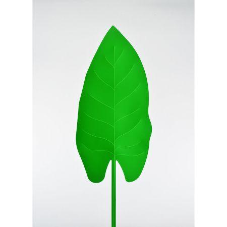 Τροπικό Φύλλο PVC Πράσινο 63x21cm