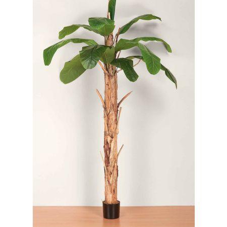 Τεχνητό δέντρο Μπανανιά σε γλάστρα 220cm