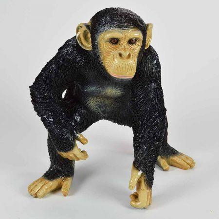 Διακοσμητικός χιμπατζής που σκύβει 50x50x35cm